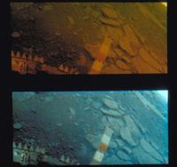 金星の表面(ベネラ13号)