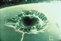 月の微小クレーター(アポロ12号)