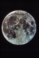 月面(表)