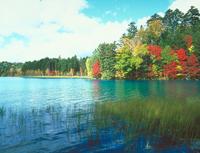 オンネトー湖 23018054130| 写真素材・ストックフォト・画像・イラスト素材|アマナイメージズ