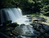奥入瀬渓流 23018054847| 写真素材・ストックフォト・画像・イラスト素材|アマナイメージズ