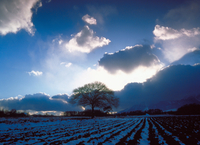 田園風景と逆光の雲