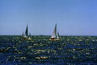 ウィンドサーフィン 23018055580| 写真素材・ストックフォト・画像・イラスト素材|アマナイメージズ