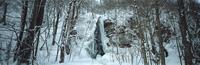 奥入瀬渓流 23018055589| 写真素材・ストックフォト・画像・イラスト素材|アマナイメージズ
