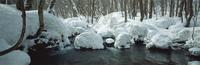 奥入瀬渓流 23018055592| 写真素材・ストックフォト・画像・イラスト素材|アマナイメージズ