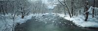 奥入瀬渓流 23018055594| 写真素材・ストックフォト・画像・イラスト素材|アマナイメージズ