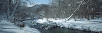 奥入瀬渓流 23018055595| 写真素材・ストックフォト・画像・イラスト素材|アマナイメージズ