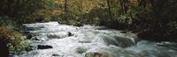 奥入瀬渓流 23018055605| 写真素材・ストックフォト・画像・イラスト素材|アマナイメージズ