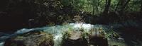 奥入瀬渓流 23018055619| 写真素材・ストックフォト・画像・イラスト素材|アマナイメージズ