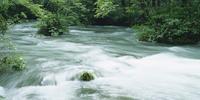 奥入瀬渓流 23018055621| 写真素材・ストックフォト・画像・イラスト素材|アマナイメージズ