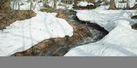 奥入瀬渓流 23018055624| 写真素材・ストックフォト・画像・イラスト素材|アマナイメージズ