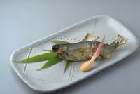あゆの塩焼き 23018057579| 写真素材・ストックフォト・画像・イラスト素材|アマナイメージズ