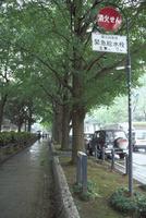 横浜市の消火栓標識