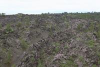 桜島の噴石