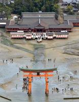 厳島神社と大鳥居