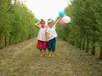 オリーブ畑にいる外国人の子供たち