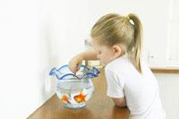 金魚に餌をあげる女の子