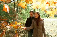 紅葉を楽しむ夫婦 24003000185  写真素材・ストックフォト・画像・イラスト素材 アマナイメージズ