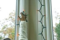 クリスマスの電飾を窓につける子供