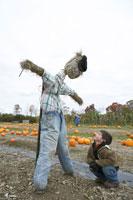 かぼちゃ畑でかかしと遊ぶ少年