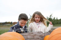 拾ったかぼちゃを見る少年と少女