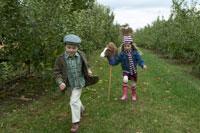 りんご畑で少年を追いかける少女