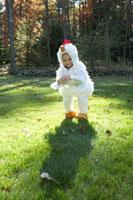 鶏のハロウィーン衣装を着た少年