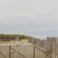 ケープコッドの砂浜