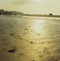 夕陽の海岸を散歩する夫婦と息子と娘