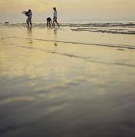 夕陽の海岸を散歩する夫婦と息子と娘 24007000136| 写真素材・ストックフォト・画像・イラスト素材|アマナイメージズ
