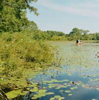 湖でボートを漕ぐ父と息子
