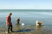 犬と一緒に網で魚捕りをする父と息子 24007000967| 写真素材・ストックフォト・画像・イラスト素材|アマナイメージズ
