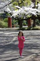 桜の木に囲まれてシャボン玉をする女の子 24009000049| 写真素材・ストックフォト・画像・イラスト素材|アマナイメージズ