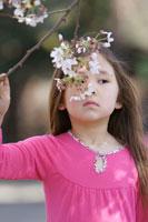 桜の花の香りをかいでいる女の子
