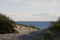 ケープコッドの海岸