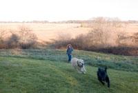 走り回る犬を追う男の子 24009000158| 写真素材・ストックフォト・画像・イラスト素材|アマナイメージズ