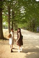 並木道を歩く女の子2人