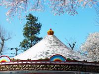 桜の木の下の遊園地