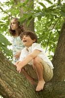 木登りをして遊ぶ少年と少女