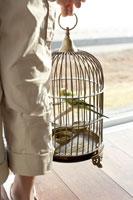鳥かごを持つ少女