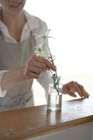 瓶に花を活ける女性の手元