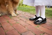 犬と一緒に佇む女の子の足元