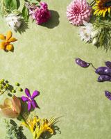生花のウォールペーパー 24015000497| 写真素材・ストックフォト・画像・イラスト素材|アマナイメージズ