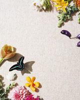 生花のウォールペーパーと蝶