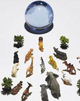 地球に向かう動物たち 24015000623  写真素材・ストックフォト・画像・イラスト素材 アマナイメージズ