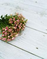 バラの花束 24019000015| 写真素材・ストックフォト・画像・イラスト素材|アマナイメージズ