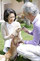 庭で犬と遊ぶシニアカップル