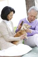 庭に犬と一緒に座るシニアカップル