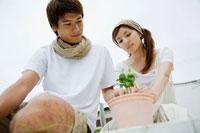 苗を植木鉢に植える男性と女性 24023000120| 写真素材・ストックフォト・画像・イラスト素材|アマナイメージズ