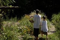 花カゴを持ち歩く母と娘の後ろ姿 24024000153| 写真素材・ストックフォト・画像・イラスト素材|アマナイメージズ